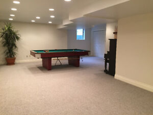 Huge Basement Space Ideal For Couple