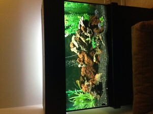 120 Gallon Aquarium Full Setup Beautiful