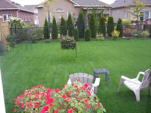 NO CONTRACTS, ELITE LAWN MOWING SERVICE Cambridge Kitchener Area image 2
