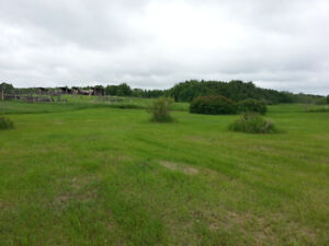 Over 1/2 acre lot at Buffalo Lake - Survey Stakes In