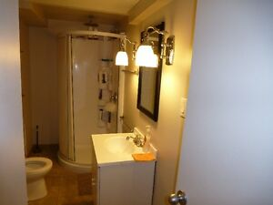 Executive 2 Bedroom Furnished Suite With All The Extras Regina Regina Area image 4