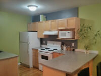 Awesome 2 bedroom Inner City Condo steps from River / downtown