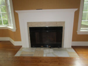 Gas Insert with Remote Control and Mantel