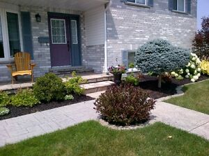 Lawn Maintenance  * Tillsonburg Area * London Ontario image 3