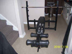 Heavy Duty Gym Quality Northern Light work out Bench With Extras