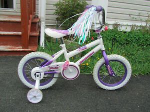 14in Girl Bike in Excellent Condition