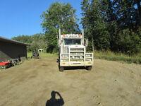 2007 Peterbilt Tri 379 in Peace River