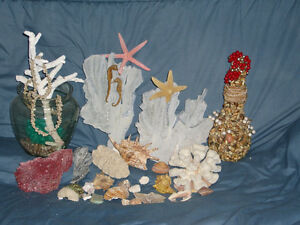 CORALS LARGE COLLECTION
