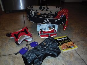 EVERYTHING YOU NEED FOR A PUPPY!