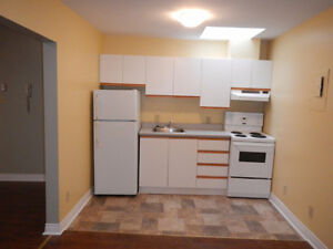 Bright Open Concept 1 Bedroom Apt on WATER STREET AVAIL NOW