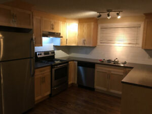 FULLY RENOVATED, 2BD, 8909 78 AVE, WHYTE AVE/BONNIE DOON MALL