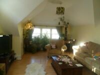 Light and spacious 2 double bedroom flat with oblique see views for working professionals