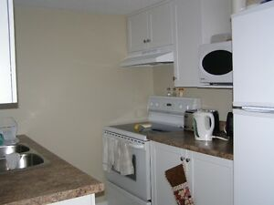 GREAT STUDENT RENTAL OR YOUNG PROFESSIONALS London Ontario image 7