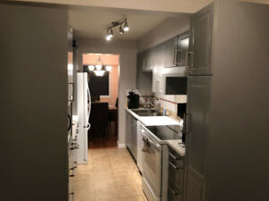 Updated 3 bedroom 2 Bath Townhouse North Delta