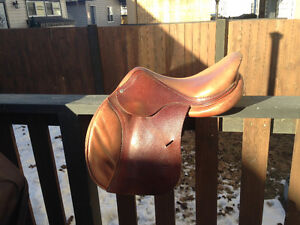16.5'' Hampton Classic by Antares Saddle For Sale