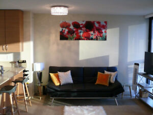 Fully Furnished One Bedroom Studio Apartment - JAN 1