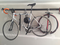 Jamis Comp Road Bike - Large