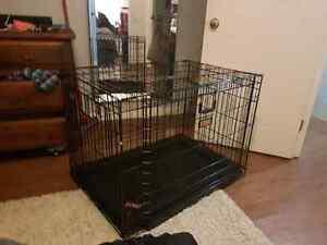 """Kong dog crate and kong crate mat 43"""""""