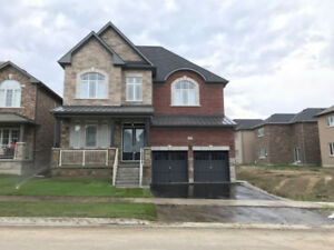 House for Rent in Bradford