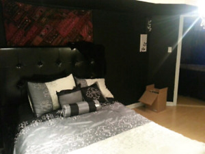 Black upholstery bed