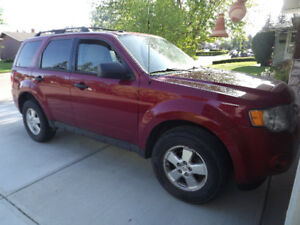2010 Ford Escape, ready for you to drive it!