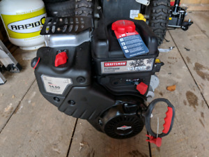 14.50 Briggs and Stratton