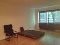 Beautiful 1 Bedroom Apartment for rent (Newly Renovated)