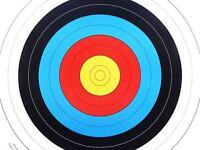 20 X 40x40cm Pro Targets Faces For Archery & Crossbow - petron - ebay.co.uk