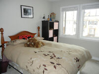 3 bedroom townhouse available immediately until March 31