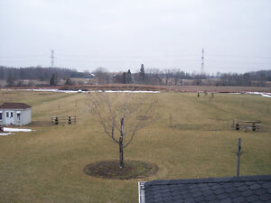 Residential Mowing Starting At $65, Cambridge Kitchener Area image 1