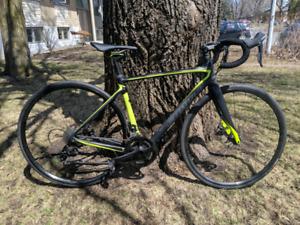 Vélo de route - Specialized Roubaix 52sm