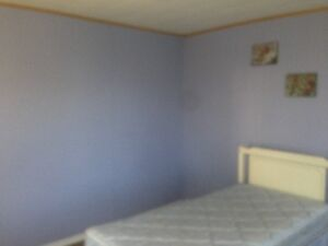 FURNISHED 8 BED ROOM-3 BATHROOM HOME FOR CONTRACTORS Peterborough Peterborough Area image 10