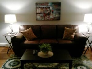 FURNISHED CONDO ON PATRICK ST.  WALKING DISTANCE TO DOWNTOWN.