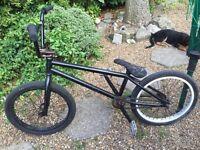 BMX Bike | WeThePeople | Salt | Eclat |