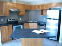 Nearly new, beautiful 2 bed 2 bath condo in Clareview Station