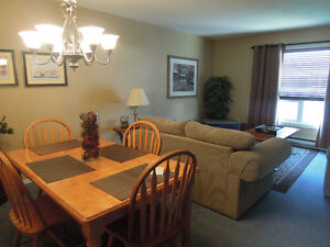3 Bed Townhouse near Wharncliffe & Commissioners London Ontario image 4