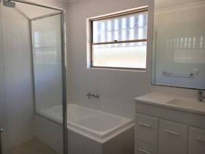 Macrossan Street, Norman park, 1 Bedroom to rent Norman Park Brisbane South East Preview
