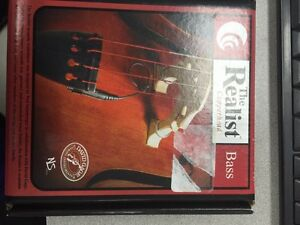 The Realist RLSTSB1 Realist Bass Acoustic Transducer - in box