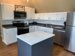 Downtown  1000 square furnished 1 bedroom.