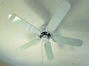 Fan / Ventilateur de plafond