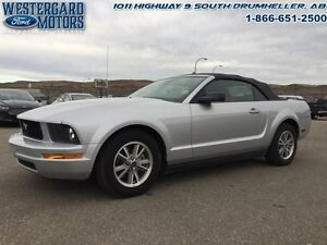 2005 Ford Mustang   - Low Mileage