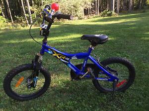 "16"" Boys Bike - Blue SOLD"