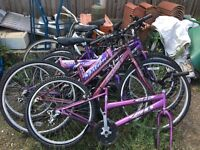 X15 push bikes for spares or repairs plus lots o wheels