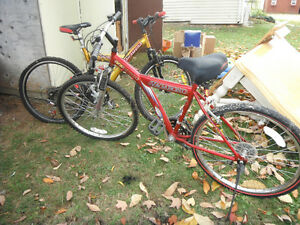 2 bikes and accessories for sale