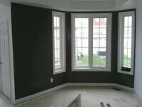 F&h professional painting