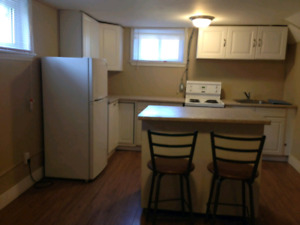 1 BDRM LOWERL LEVEL APT $750 INC - SINGLE PERSON