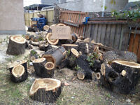 Free wood for fire place