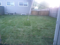 Get your lawn installed at a low price.  4 years experience.
