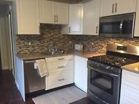 Home Renovation, Carpentry, Tiling, kitchen install, Drywall.