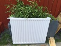 Honeywell White Radiator , 12 months old , excellent condition